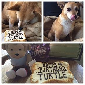 Client Cake